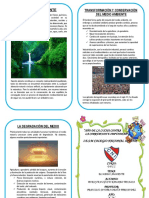 medio ambiente folleto .docx