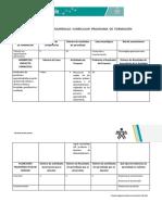 Ficha Técnica Desarrollo Curricular Programa de Formación