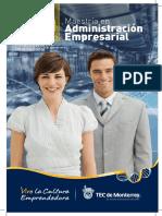 MAE - Ejecutivo.pdf