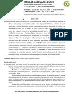 Informe Modelo Ing.teodoro (1)