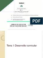 Tema 1 Desarrollo Curricular