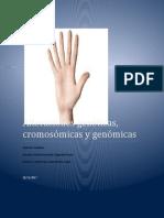 Alteraciones geneticas.docx