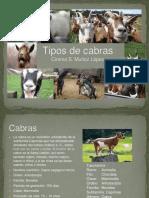 Tipos de Cabras