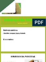 Histologia-Vegetal (2).pptx