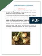 Fitomejoramiento de Allium Cepa ..,, Imprimir