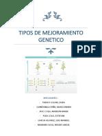 Tipos de Mejoramiento Genético en Plantas Alogamas (1)
