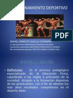 bases teoricas.pdf