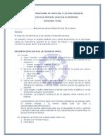 Instructivo Tesina y Pretesina (1)