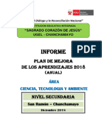 Informe Plan de Mejora 2018 Anuallll
