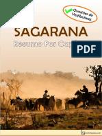 Sagarana Resumo Por Capitulo