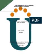 Unidad 1 Paso 1 Funcionamiento de Corteza Cerebral y Funciones Cerebrales Superiores