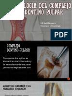 Biologia Del Complejo Dentino Pulpar