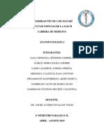 Areas de Un Laboratorio de Anatopatologia