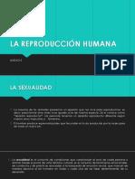 La Reproducción Humana