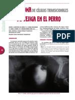 1623Carcinoma.pdf