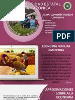Economia Familiar Campesina