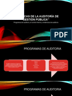 Procedimientos de Auditoria de Gestion