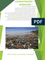 La Contaminación Ambiental Trabajo 4to D
