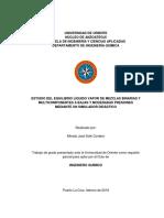 ESTUDIO DEL EQUILIBRIO LÍQUIDO VAPOR DE MEZCLAS BINARIAS Y MULTICOMPONENTES A BAJAS Y MODERADAS PRESIONES MEDIANTE UN SIMULADOR DIDÁCTICO