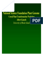 National science fundation plant genome