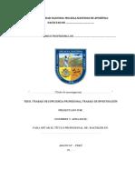 Modelo de Presentación de Informe Final de Tesis - UNAMBA