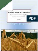 como-evangelizar.pdf