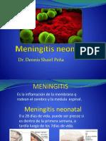 meningitisneonatal-161015181912