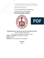 4to Informe de Microbiologia (solo archivo)