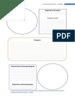 Modelo de Presentación de Láminas - Patología