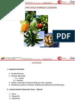 JESUS ENRIQUE LOSSADA 2010-2011.pdf