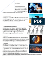 5 Teorias de La Evolucion