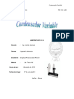 Condensador Variable 3