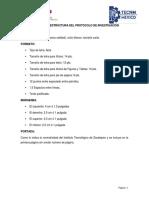 protocolo1.1