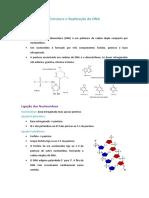 Estrutura e Replicação do DNA.docx