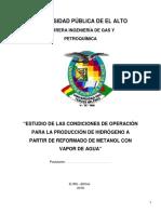 Perfil de Grado Produccion de Hidrogeno Metanol - Copia