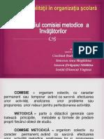 Comisia metodica