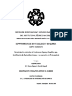 IPN Caracterizacion de Agave