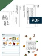Ficha de Los Alimentos.