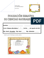 Evaluación Sumativa c.n Unidad 5 2013