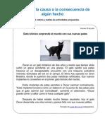 COmpr lect 3 ju.pdf