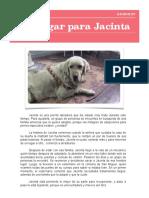 noticia 4.pdf