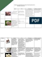 Minerales Que Se Forman en Depositos de Contacto Metasomatico o Pirometasomatico
