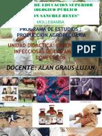 CLASE DE INFECCIOSAS.pptx