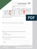 06_evaluacion CN.pdf