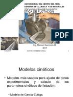 E flotacion - 2017.pdf