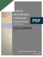 Plan  de Necesidades Educativas Especiales  1
