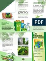 Triptico-del-dia-mundial-del-medio-ambiente.docx