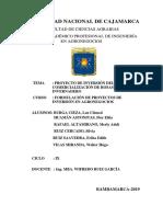 PROPUESTAS DE PROYECTOS DE INVERSIÓN.docx