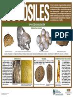 los-fosiles.pdf