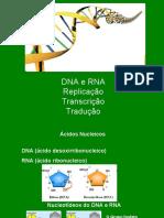 DNA e RNA.pdf